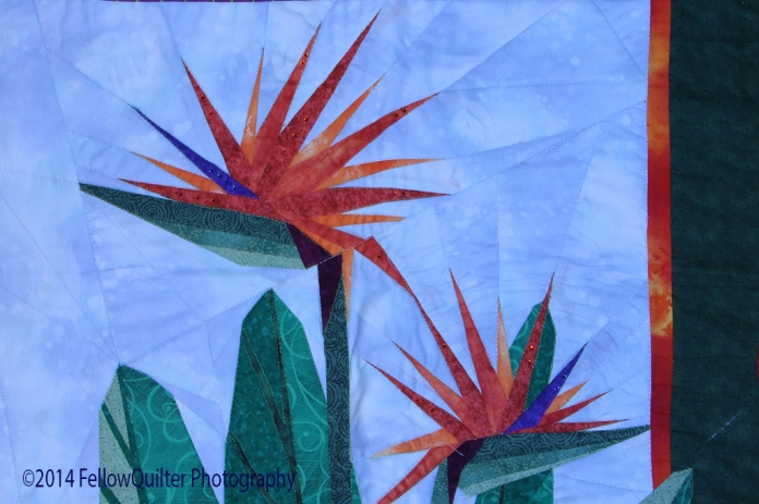 bird of paradise quilt wp_1024